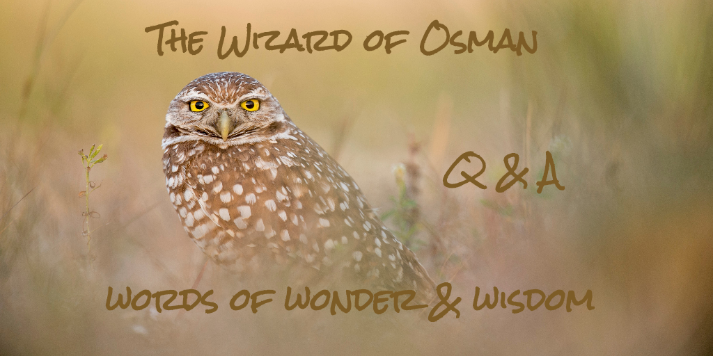 The Wizard of Osman Q&A